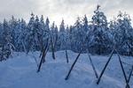 Lappland @ Rena Hackl fotografiert 2018