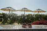 Pool ART Rotana Hotel & Resort @ Rena Hackl fotografiert 2017
