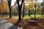Herbst im Prater © Rena Hackl fotografiert